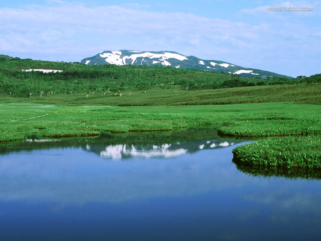 日本的春天原野图片