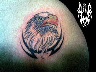 昨天做的鹰头 - 赤蜴堂纹身店的博客 - 红豆博客