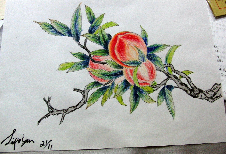 少儿国画桃子的画法步骤