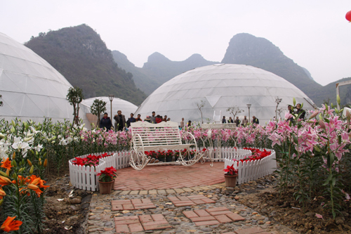 定乐江风景区是马山县新发现待开发的一个岩溶水乡