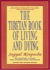 西藏生死��